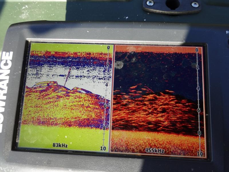 La pêche du brochet en lac Dsc00010