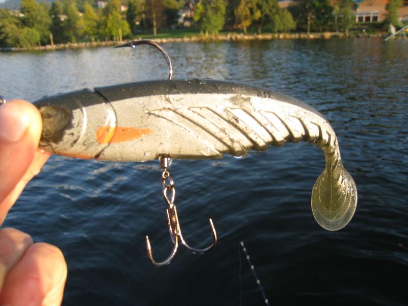 La pêche du brochet en lac Img_4010