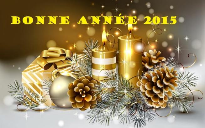 Mes meilleurs vœux 2015 73054012