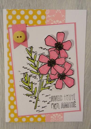 cardlift de février  - Page 2 Dsc00119