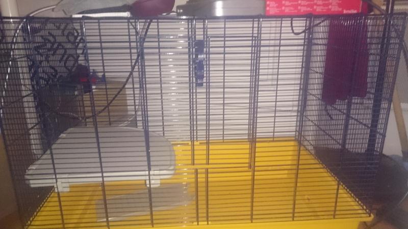 vend cage freddy 2 20150210