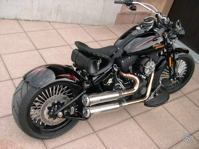 Softail Springer et Springer Heritage  Uniquement - Page 5 Cross_10