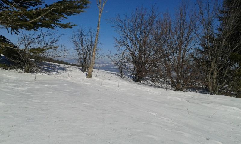 Soldes d'hiver à Sirène, on brade tout le spot. Un CR en commesivousyetiez-rama :) 20150215