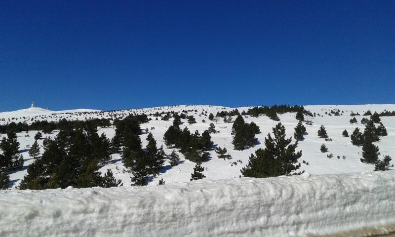Sommet du Ventoux par la face sud 20150238