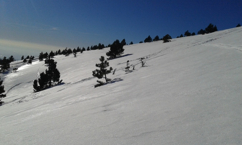 Sommet du Ventoux par la face sud 20150248
