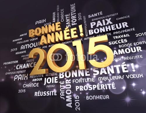 VOEUX DE BONNE ANNÉE 2015 , 16 , 17. Voeux_10