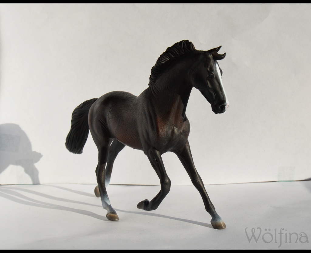 4 CollectA horses:Morgan, Standardbred Pacer Stallion, Clydestale, Thoroughbred Mare Dsc_1316