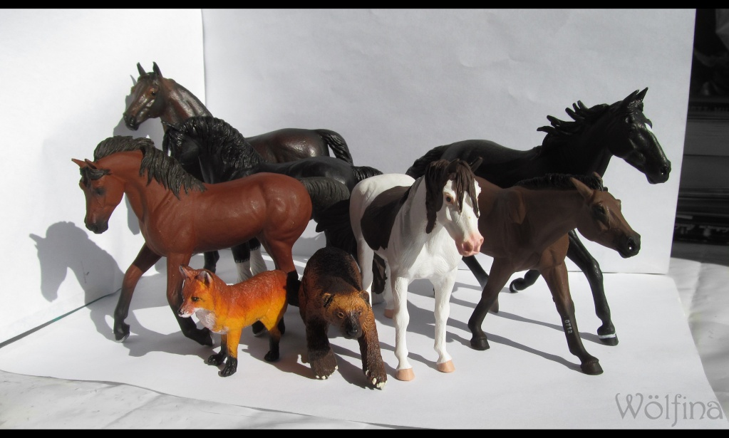 4 CollectA horses:Morgan, Standardbred Pacer Stallion, Clydestale, Thoroughbred Mare Img_6010