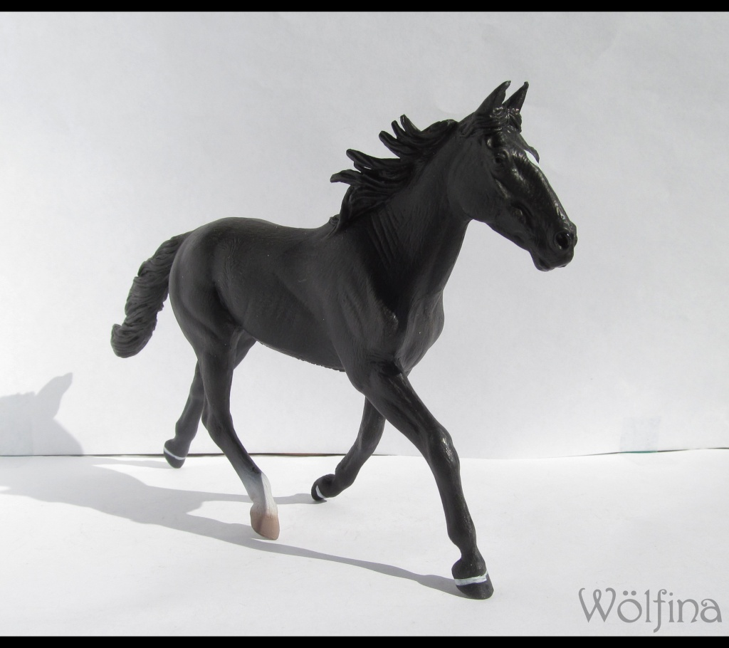 4 CollectA horses:Morgan, Standardbred Pacer Stallion, Clydestale, Thoroughbred Mare Img_6116