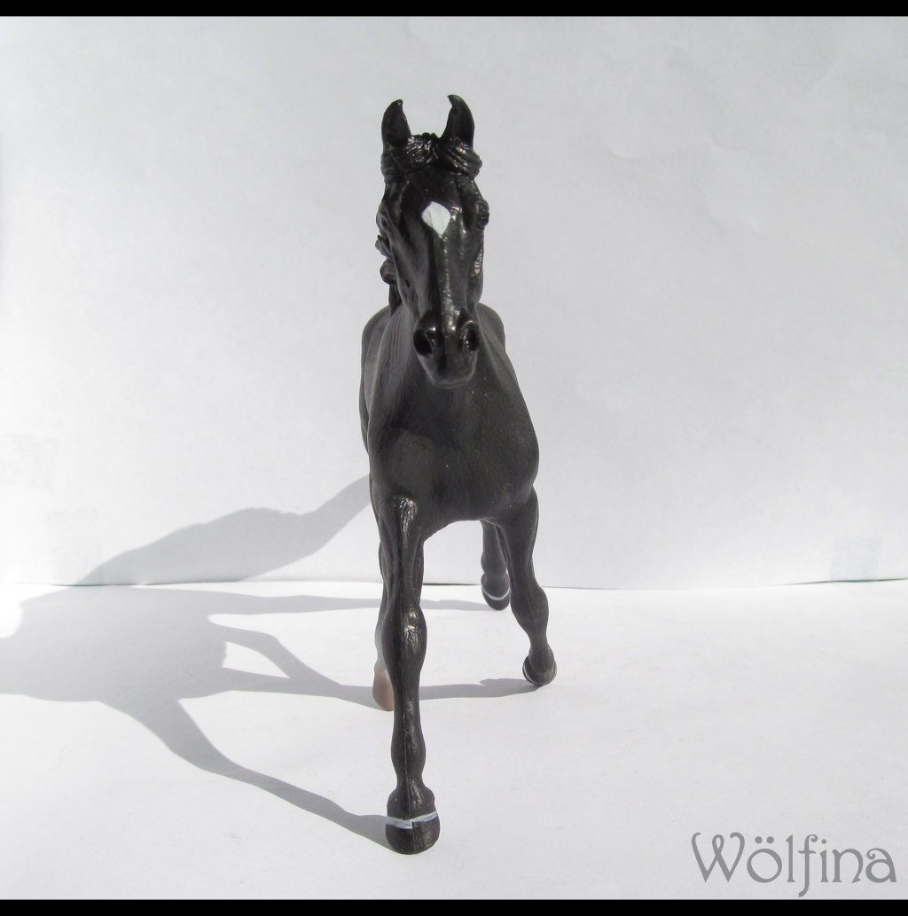 4 CollectA horses:Morgan, Standardbred Pacer Stallion, Clydestale, Thoroughbred Mare Img_6117
