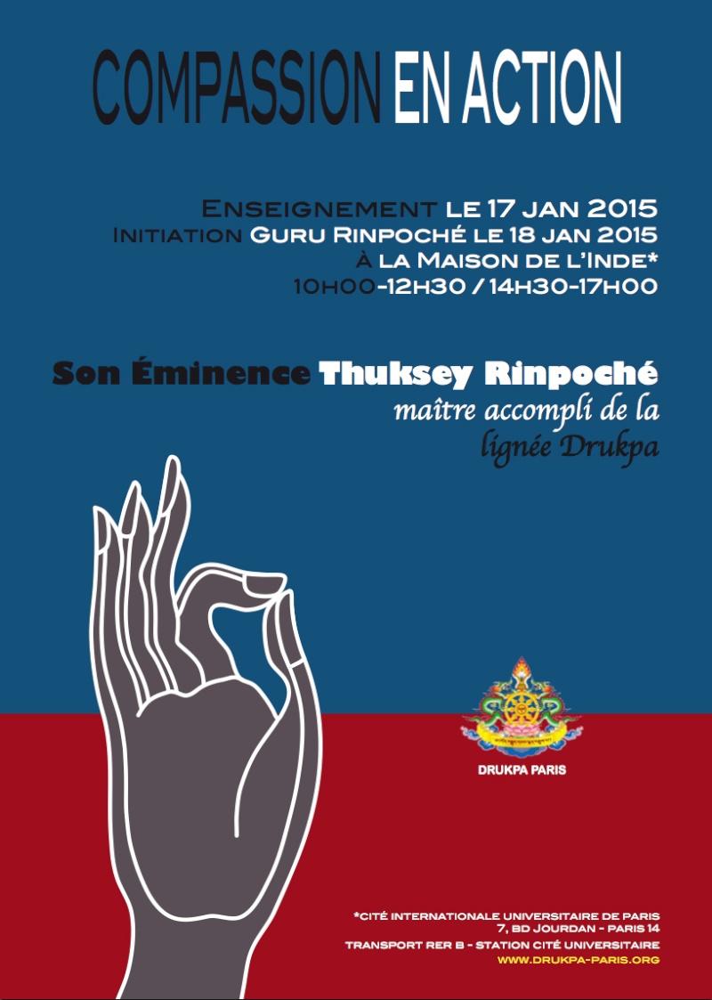 S.E Kyabjé Thuksey Rinpoché à Paris, janvier 2015 114