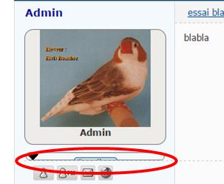 Comment ajouter une flêche sur le volet infos de l'avatar Image156