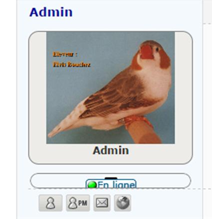 Comment ajouter une flêche sur le volet infos de l'avatar Image157