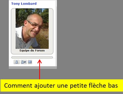 Comment ajouter une flêche sur le volet infos de l'avatar Image233