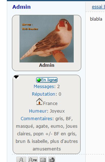 Comment ajouter une flêche sur le volet infos de l'avatar Image714