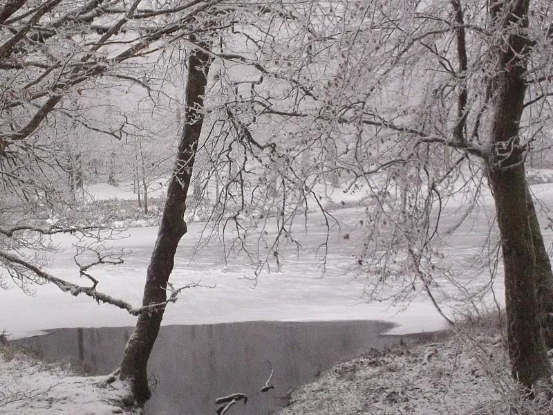CR-Video Rando Hivernale : Au Nord du Nore - Page 8 100_0616