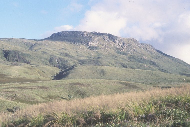 Les Pays : Zimbabwe 000_0534
