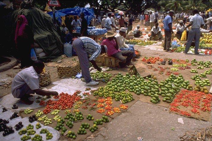 Les Pays - Tanzanie 000_0744