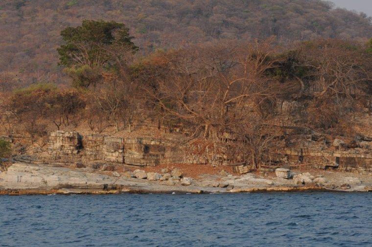 Les Pays - Tanzanie 000_0747