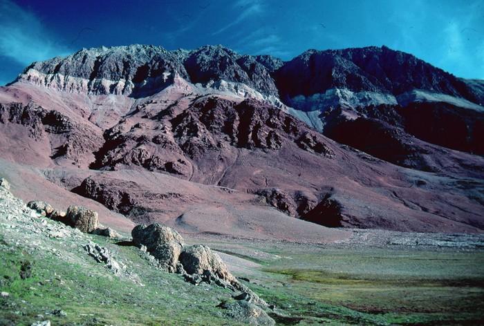 Groenland - Parc national du Nord-Est   000_1617