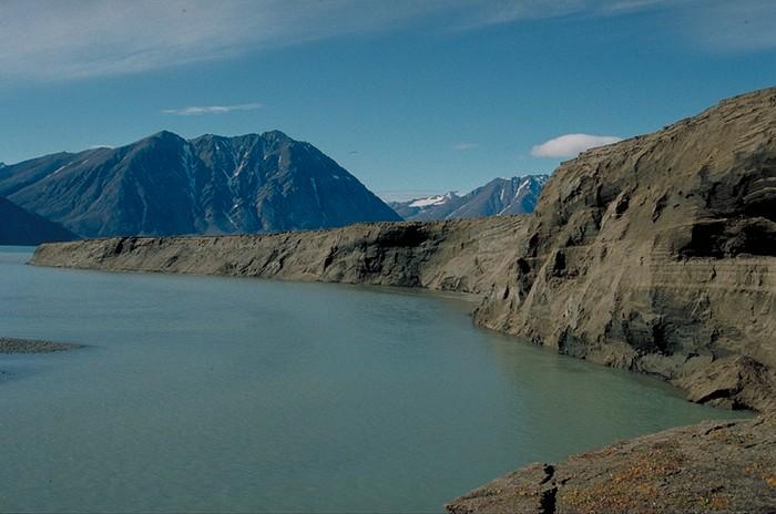 Groenland - Parc national du Nord-Est   000_1618