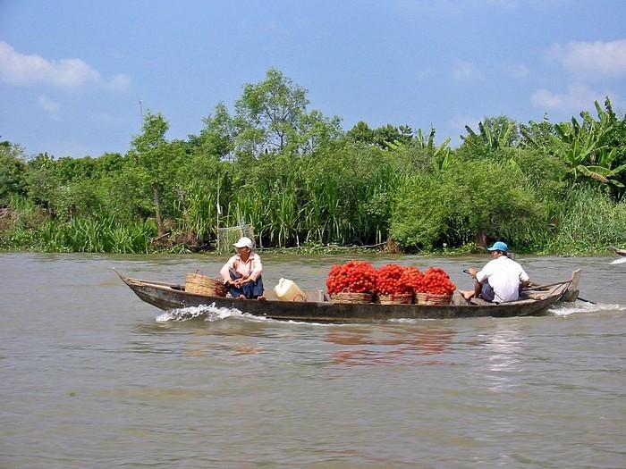 Bassin Versant d'Asie - Mékong 000_1635
