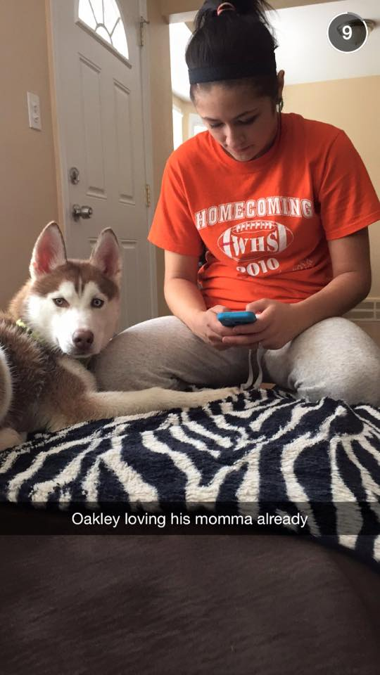 Meet our new family member! Updated 2/27/2015 Oakley10