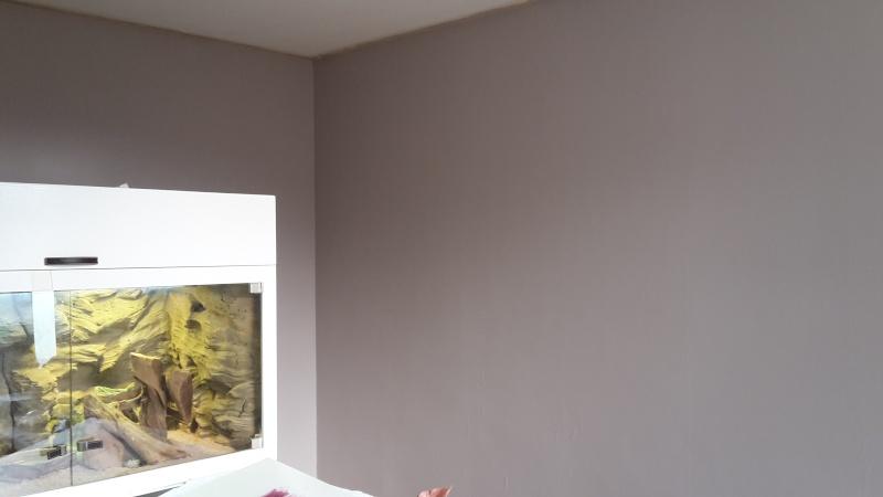 peinture salle a manger  - Page 2 20150224