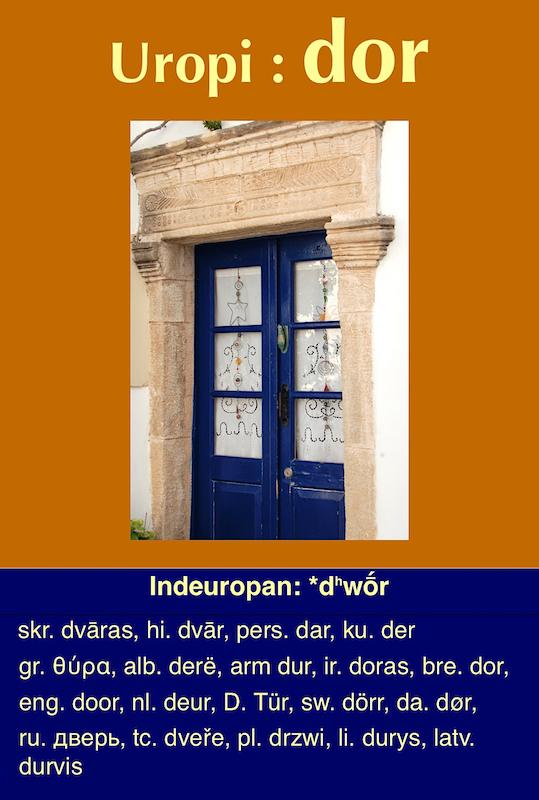 L'aneuvien, le psolat et l'uropi - Page 10 Dor1_c10