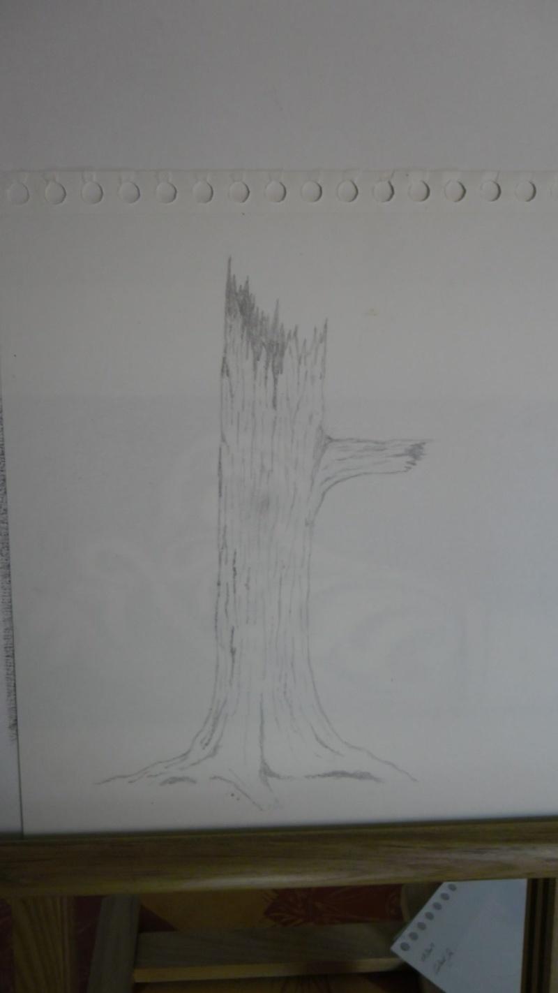Quelques dessins Sam_0815