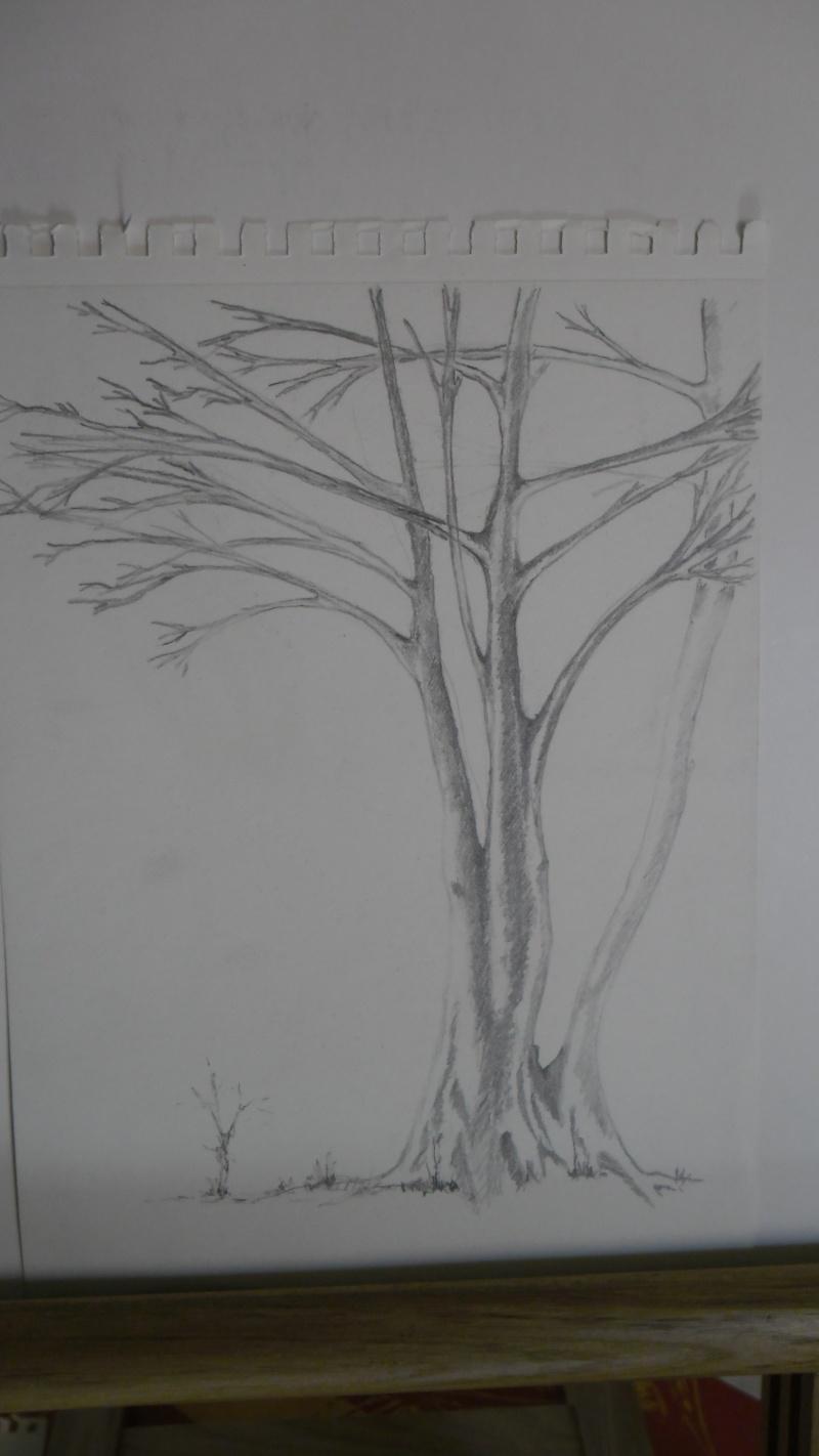 Quelques dessins Sam_0817