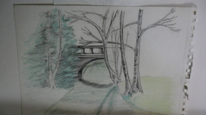 Quelques dessins Sam_0818
