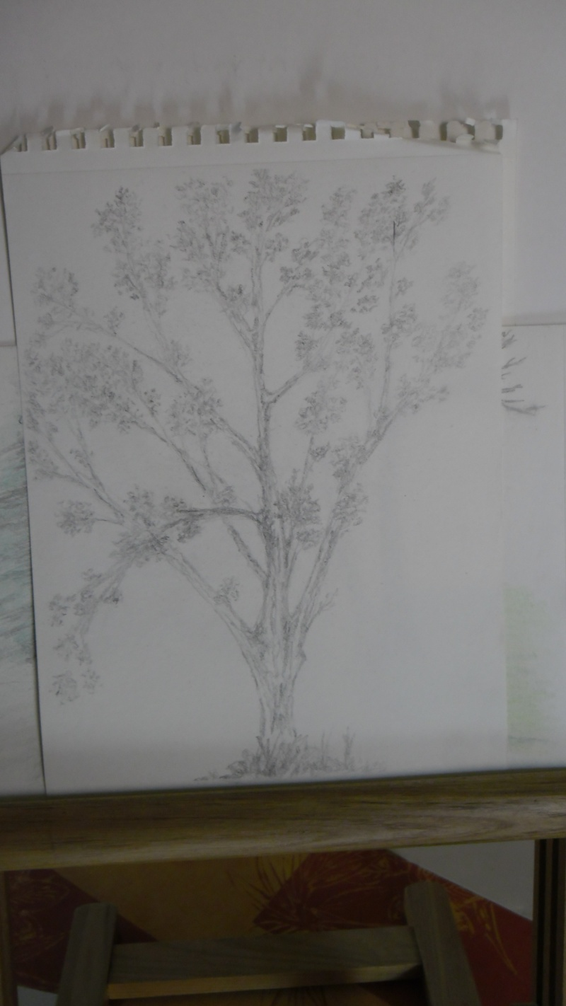 Quelques dessins Sam_0819