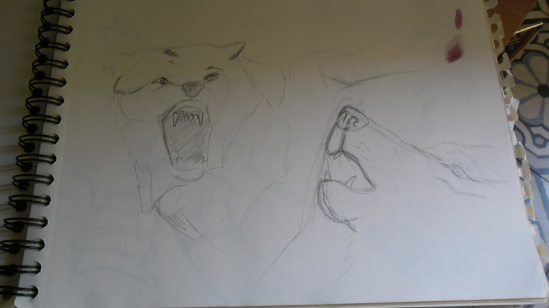 Quelques dessins Sam_0822