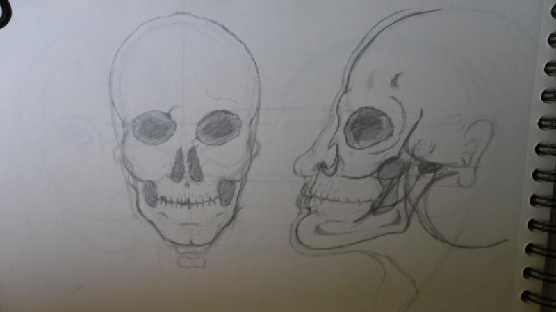 Quelques dessins Sam_0825