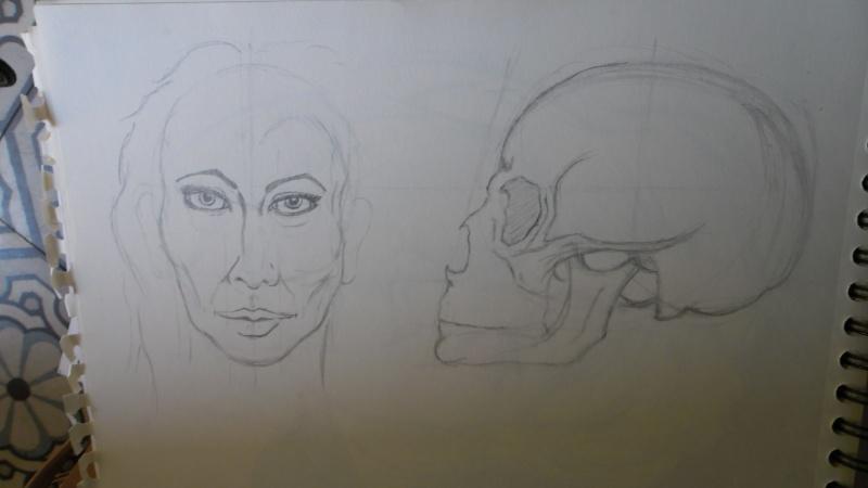 Quelques dessins Sam_0826