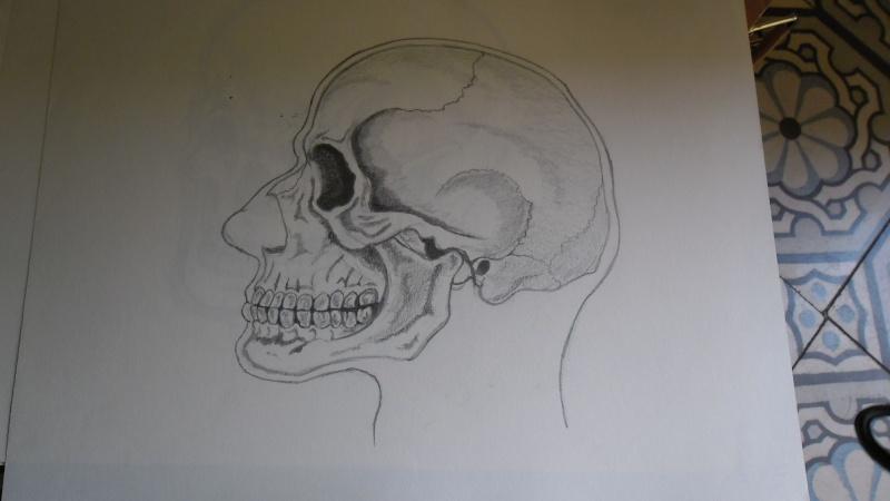 Quelques dessins Sam_0828