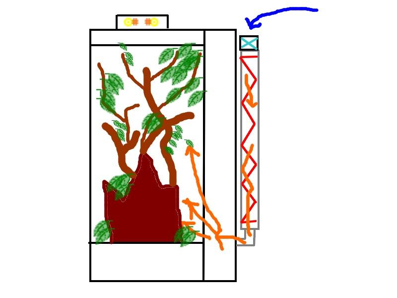 Modification projet pour installation terrarium tropical avec Anolis Sans_t18