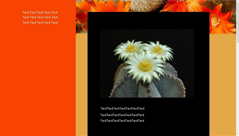 Kakteenfreunde Württembergs - Die Kaktuskompetenz im Schwabenland und der wahrscheinlich aktivste Kaktusclub der Welt! - Seite 2 Orange10