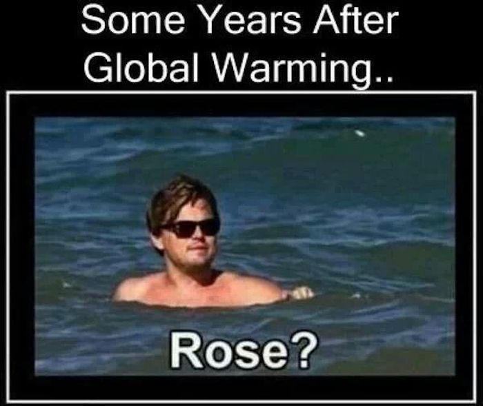 some years after global warming Rose11