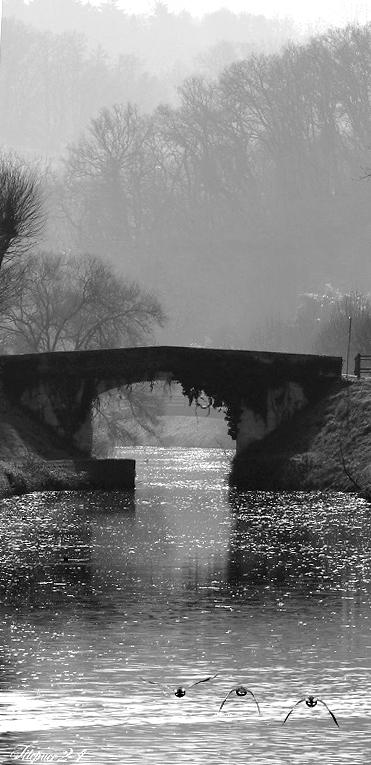 Le vieux pont 135_co10