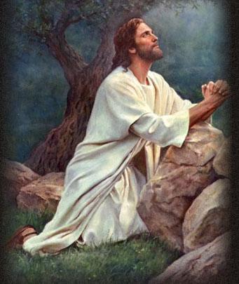 Naissance de Jésus notre Seigneur, vision de Maria Valtorta - Page 2 Jysus_18