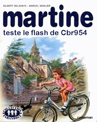 martine achète un MT 09 - Page 3 Martin12