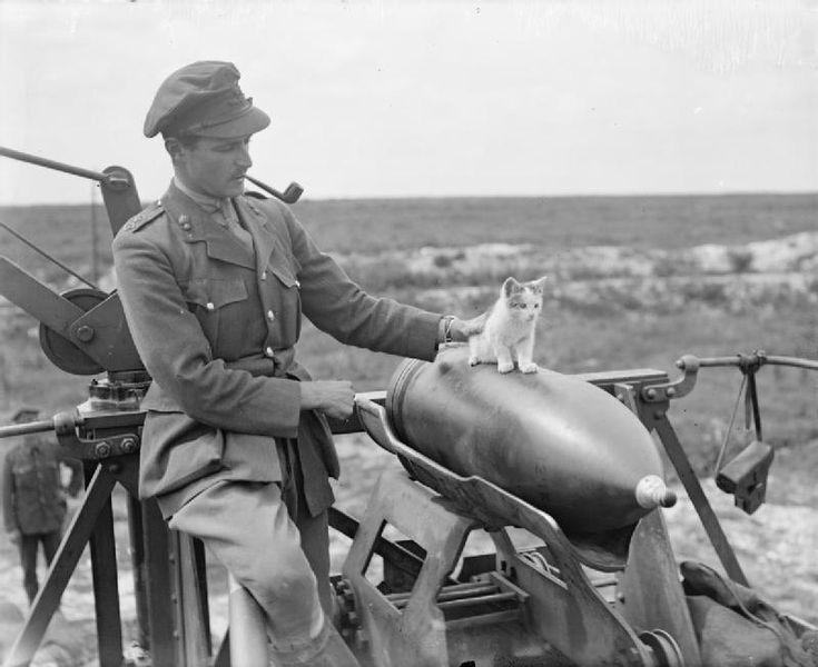 Pipe et officiers britanniques 735px-10