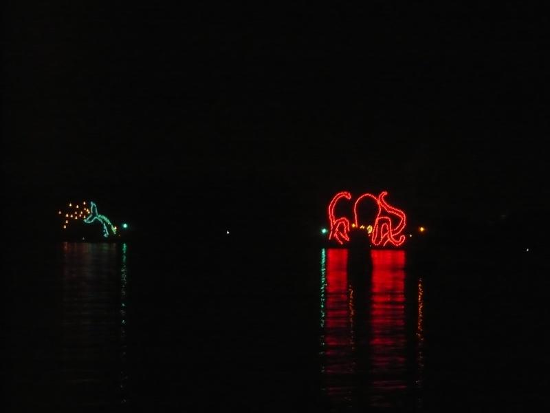 [18-31 octobre 2014] Voyage de noces à Walt Disney World et à Universal - Page 6 P1090118