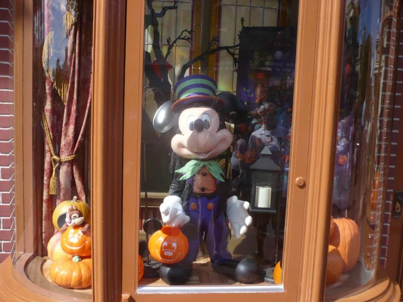 [18-31 octobre 2014] Voyage de noces à Walt Disney World et à Universal - Page 6 P1090128
