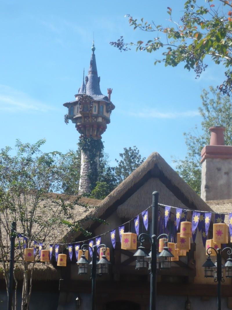 [18-31 octobre 2014] Voyage de noces à Walt Disney World et à Universal - Page 7 P1090162