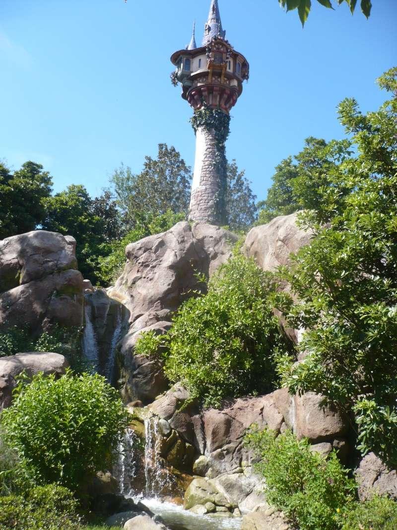 [18-31 octobre 2014] Voyage de noces à Walt Disney World et à Universal - Page 7 P1090163