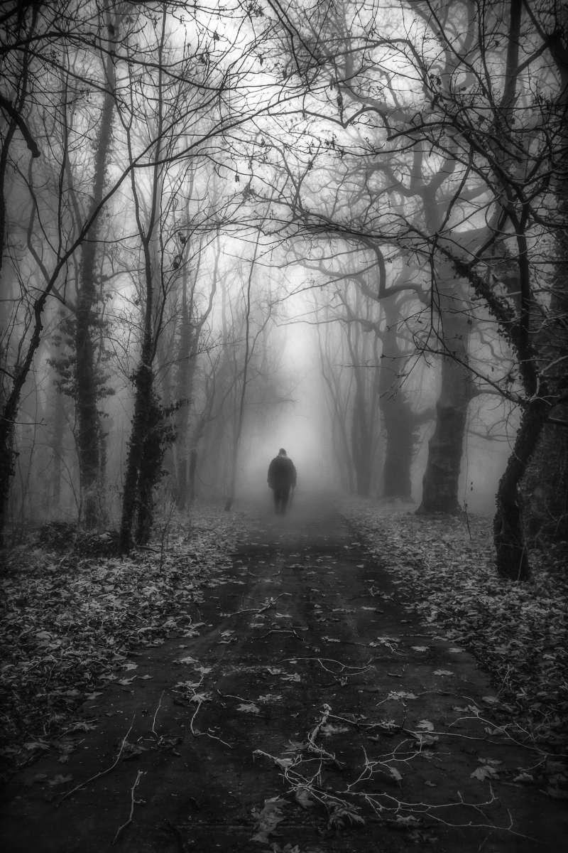 Dans le brouillard Alone_10