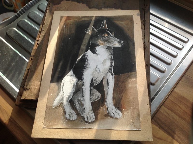 Jack Russell 2015-038